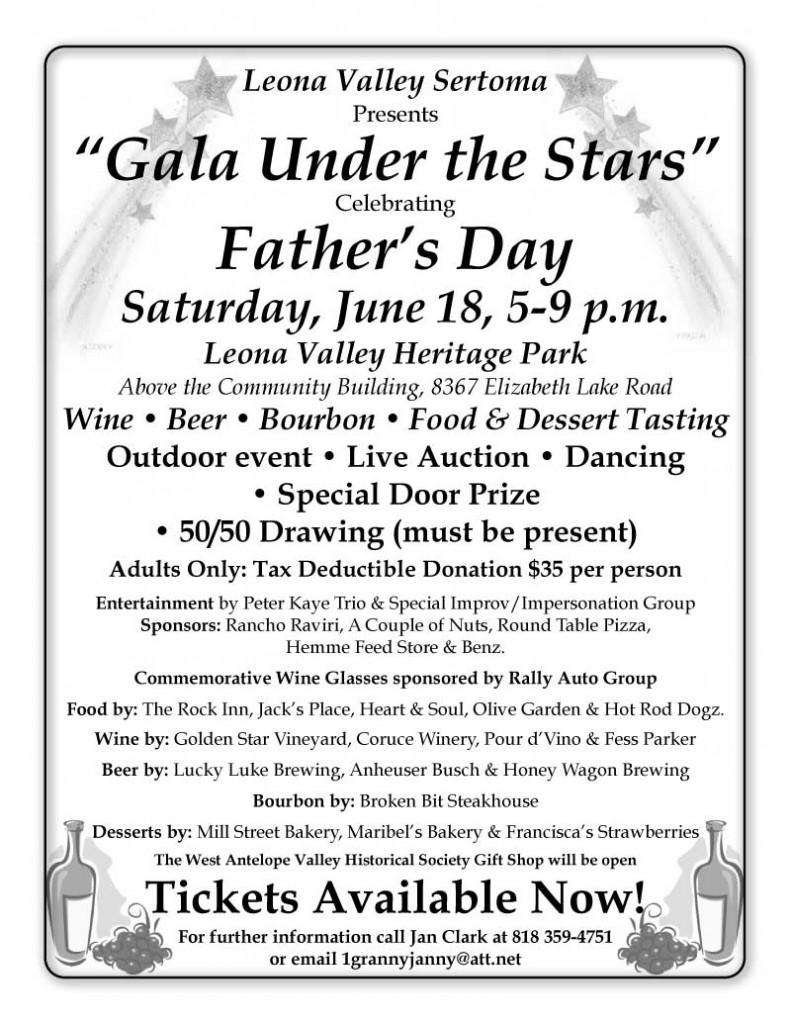 2016 Gala Under The Stars